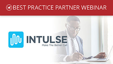 Best Practice Partner Webinar – Intulse